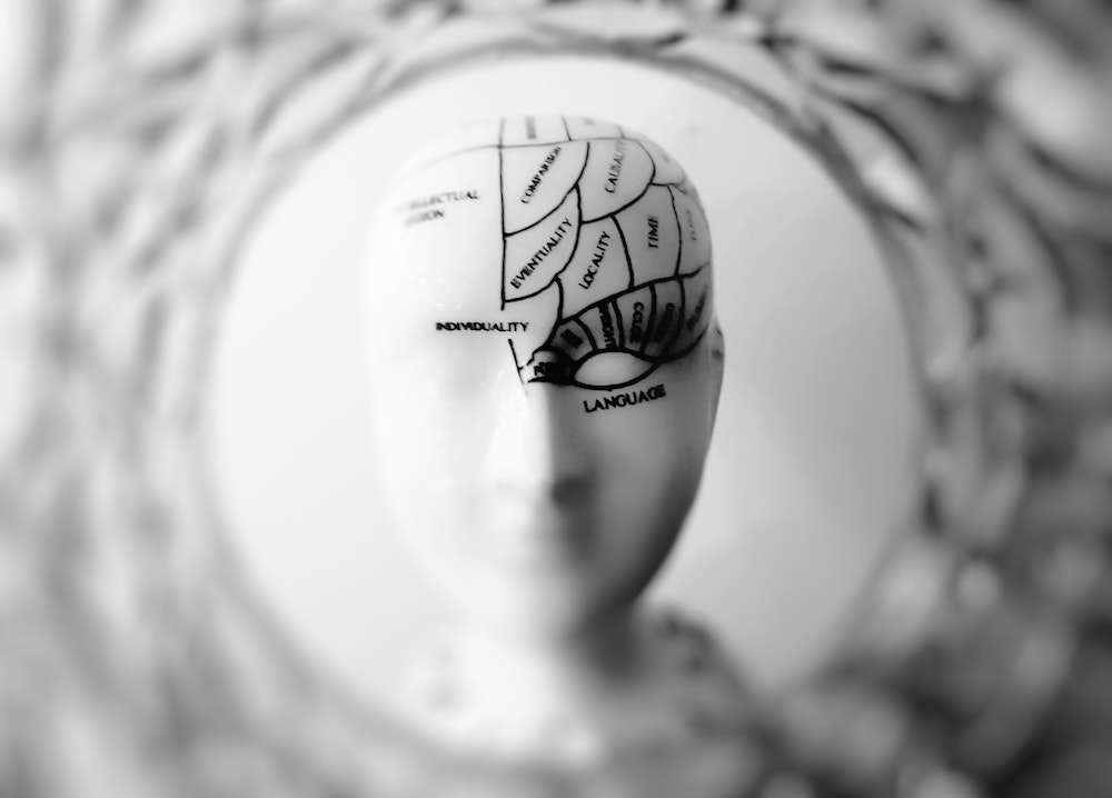 features of cortical and subcortical dementia