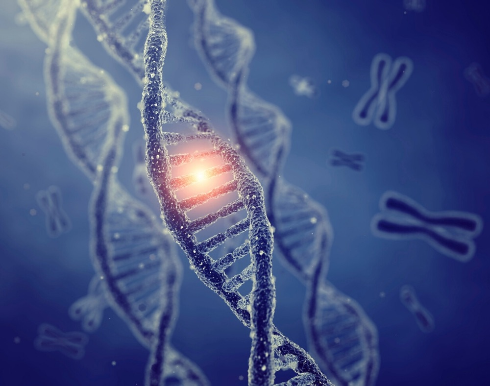 role of genes