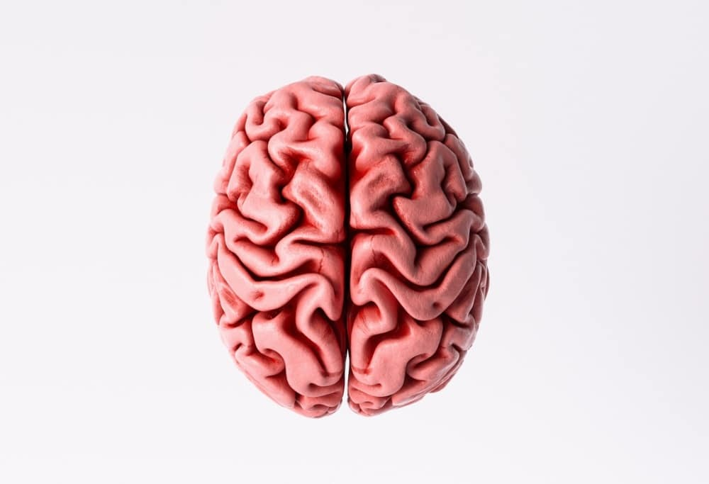 what are different kinds of dementia