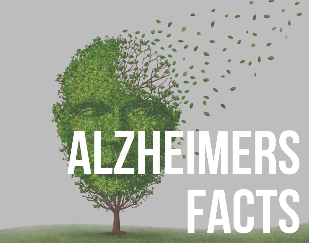 alzheimers facts