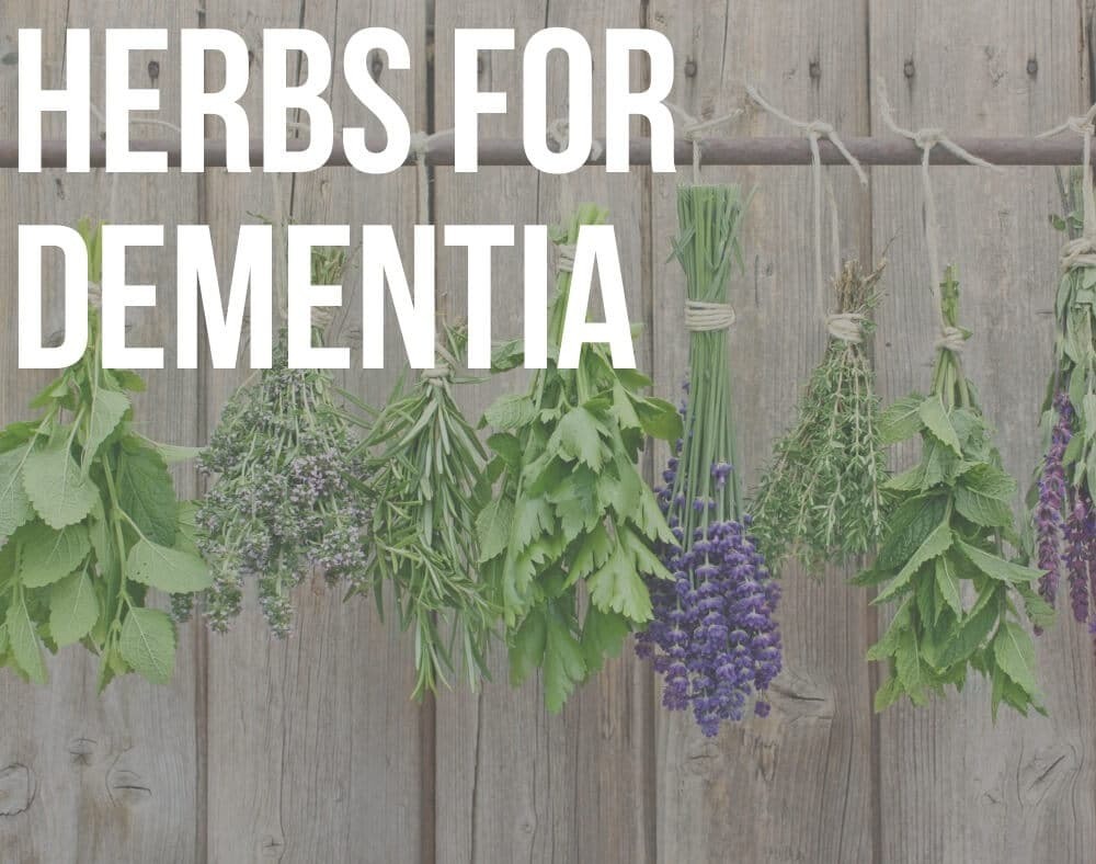herbs for dementia