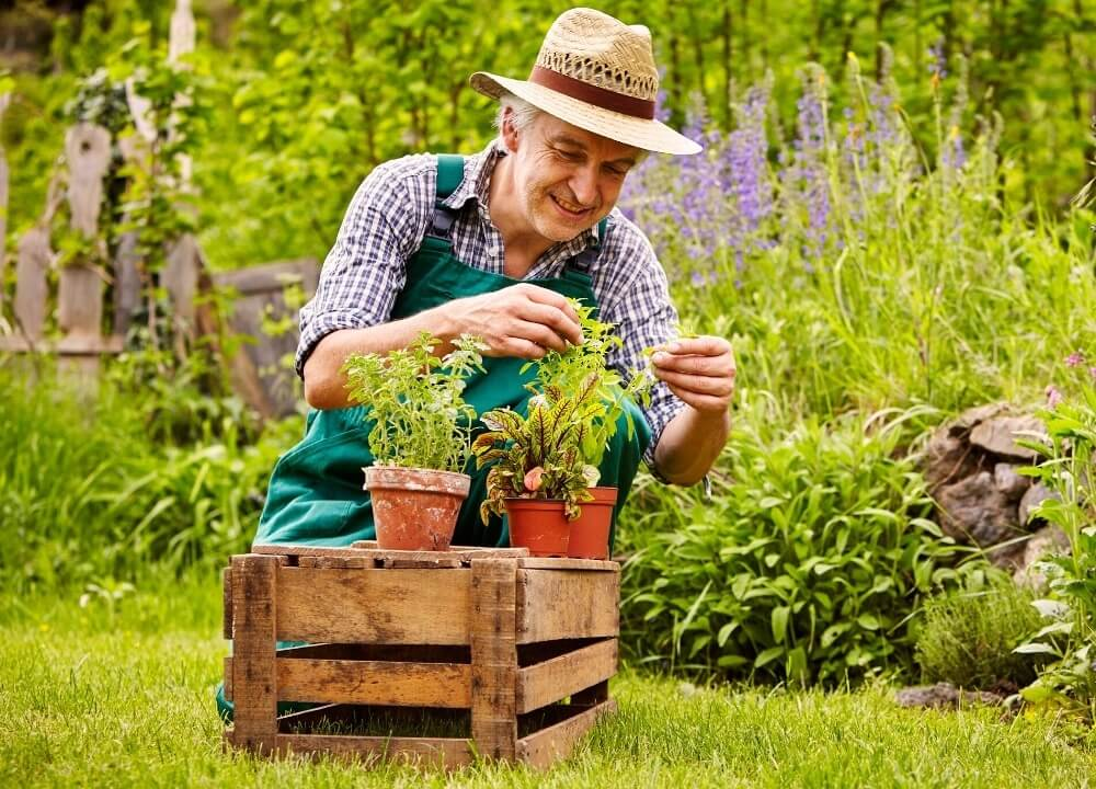 horticultural therapists are specially trained and uniquely creative