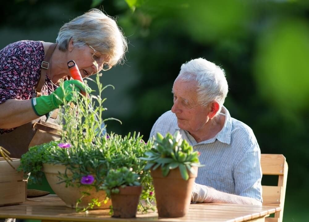 if the person with dementia is engaging with the garden it is a success