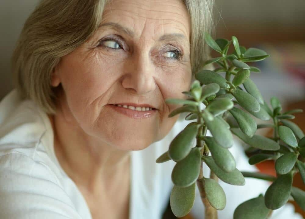 indoor gardening can bring about many desirable health outcomes