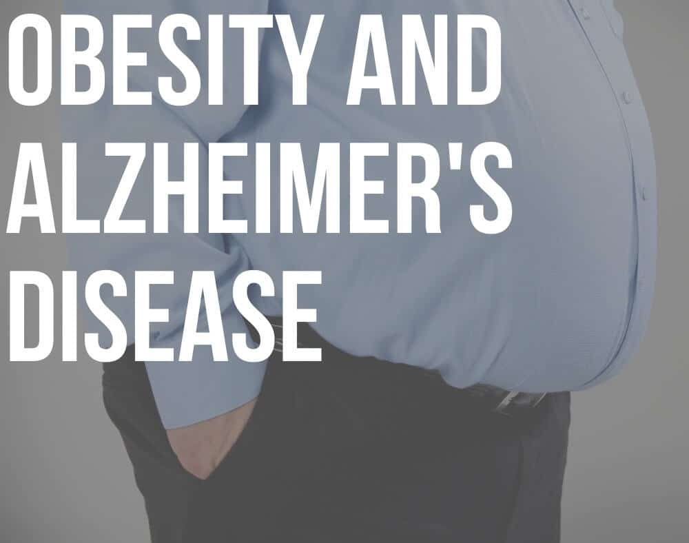 obesity and alzheimer's disease