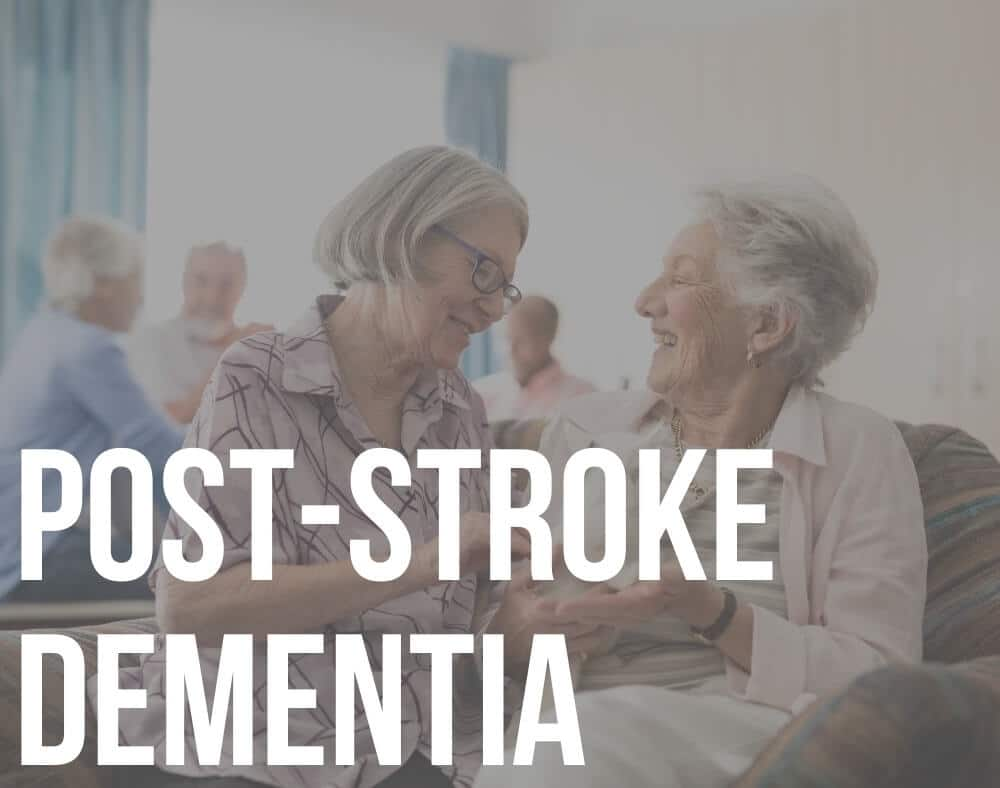 post-stroke dementia