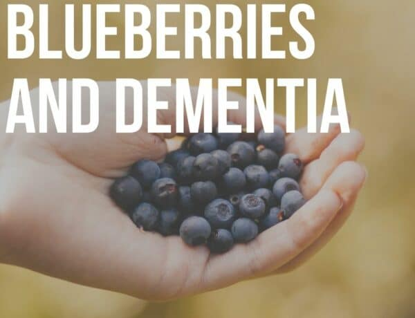 blueberries and dementia