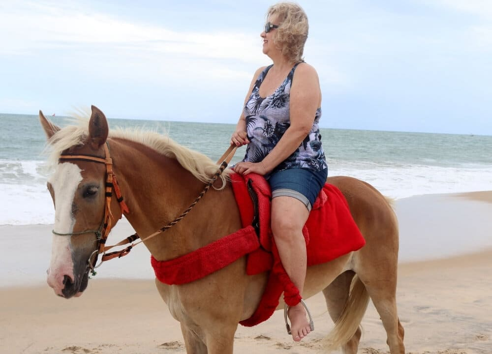 studies on the healing power of horses for persons with dementia
