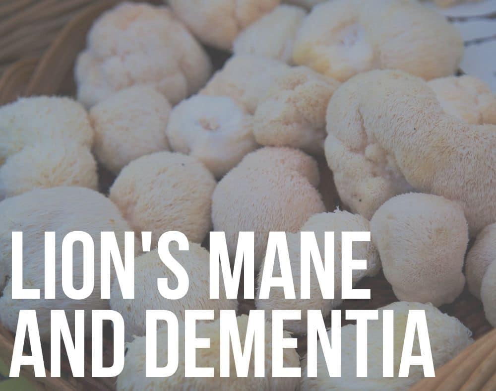 lion's mane and dementia