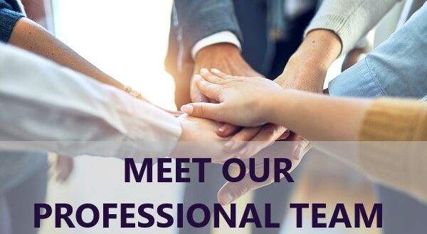 Meet Out Professional Team